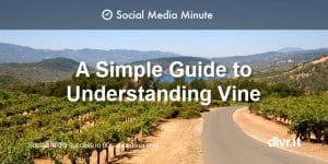 Vine.co 101 Infographic